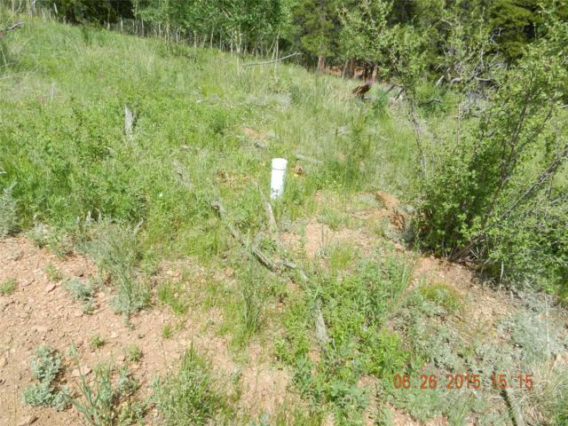 Eureka Lot 34 & 36 Street, Central City, CO 80427 (#4254863) :: Bring Home Denver
