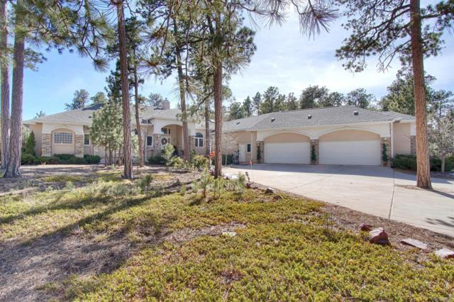 1315 Boldmere Court, Monument, CO 80132 (#4256088) :: The Peak Properties Group