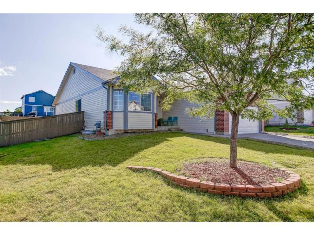4932 Eckert Circle, Castle Rock, CO 80104 (#4257435) :: The Peak Properties Group