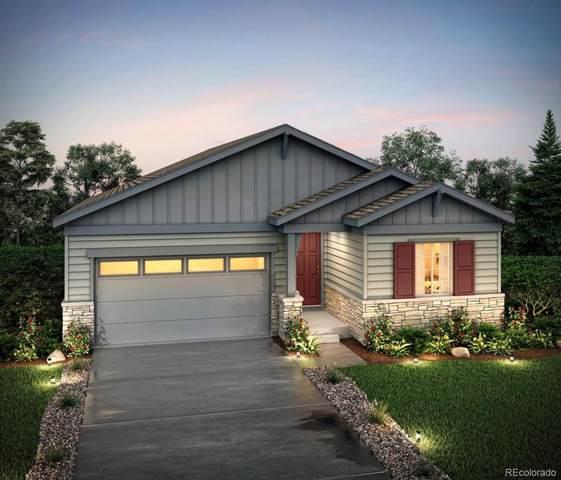 6668 Merrimack Drive, Castle Pines, CO 80108 (#4257464) :: Wisdom Real Estate