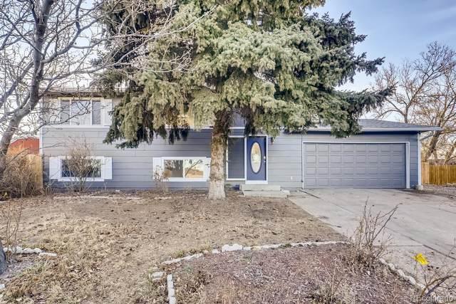 8243 Ladean Street, Denver, CO 80229 (#4259265) :: Stephanie Fryncko | Keller Williams Integrity