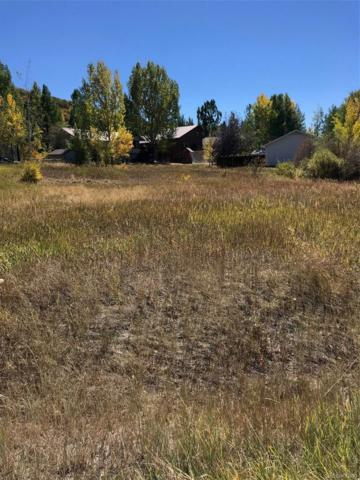 1772 Meadow Lane, Steamboat Springs, CO 80487 (MLS #4263070) :: 8z Real Estate