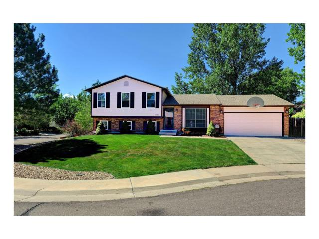 8093 S Everett Court, Littleton, CO 80128 (#4263443) :: Colorado Team Real Estate