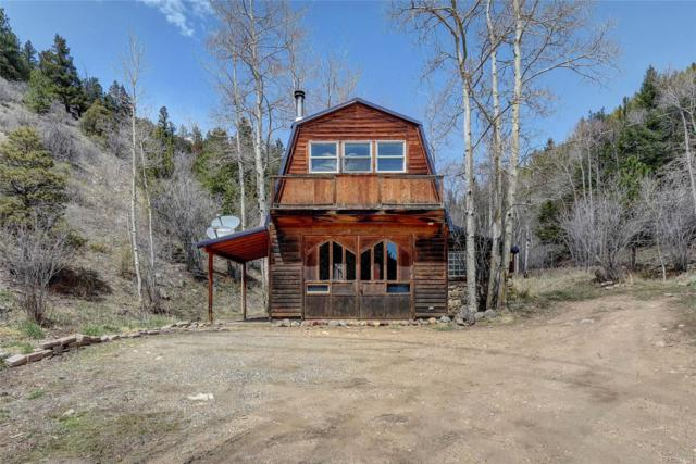225 Hamlin Gulch Road, Idaho Springs, CO 80452 (MLS #4264180) :: 8z Real Estate