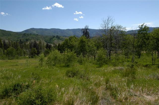 31620 Green Ridge Drive, Oak Creek, CO 80467 (#4264342) :: The Healey Group