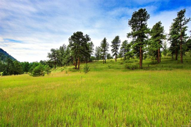 14424 Reserve Road, Pine, CO 80470 (MLS #4266381) :: 8z Real Estate
