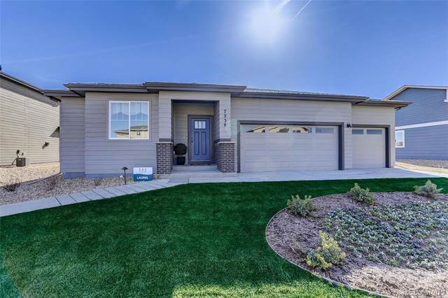 3751 Buckthorn Street, Wellington, CO 80549 (#4270668) :: The Brokerage Group