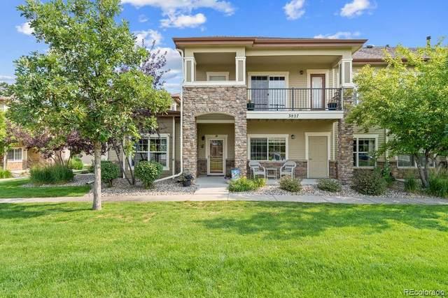 3827 Steelhead Street D, Fort Collins, CO 80528 (MLS #4271583) :: Find Colorado