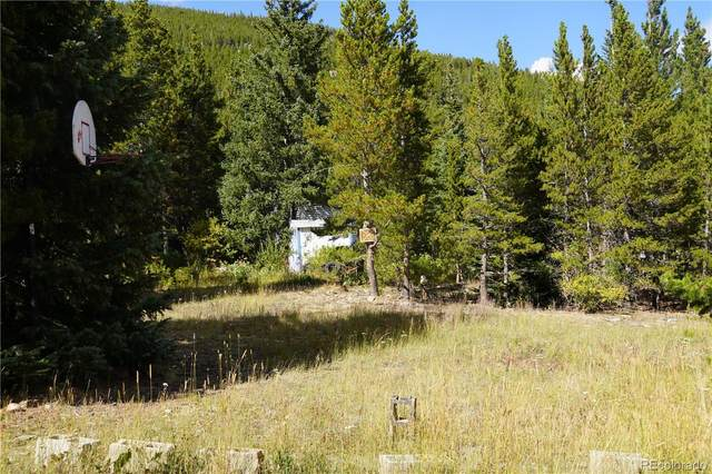 Aspen Road, Idaho Springs, CO 80452 (#4271904) :: The Margolis Team