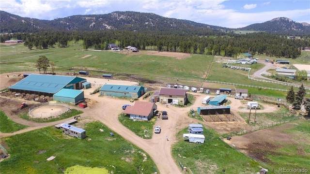 23615 Oehlmann Park Road, Conifer, CO 80433 (#4273538) :: HomeSmart Realty Group