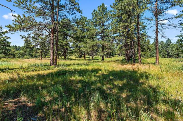 8197 Centaur Drive, Evergreen, CO 80439 (MLS #4274025) :: 8z Real Estate