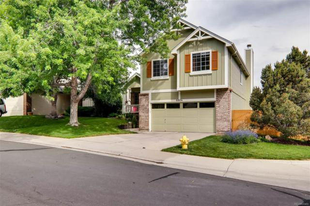 6804 Amherst Court, Highlands Ranch, CO 80130 (#4274911) :: The DeGrood Team