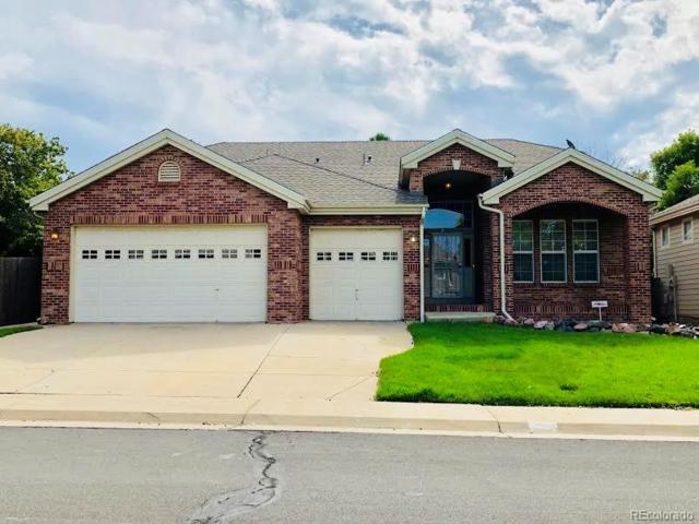 864 E 133rd Place, Thornton, CO 80241 (#4274912) :: Wisdom Real Estate