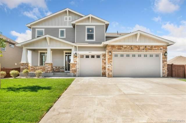 8583 E 132nd Drive, Thornton, CO 80602 (#4275378) :: Wisdom Real Estate