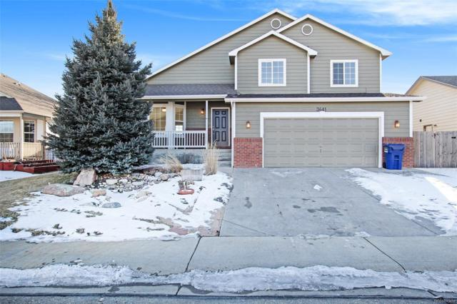 3641 Settler Ridge Drive, Mead, CO 80542 (#4275608) :: The Heyl Group at Keller Williams