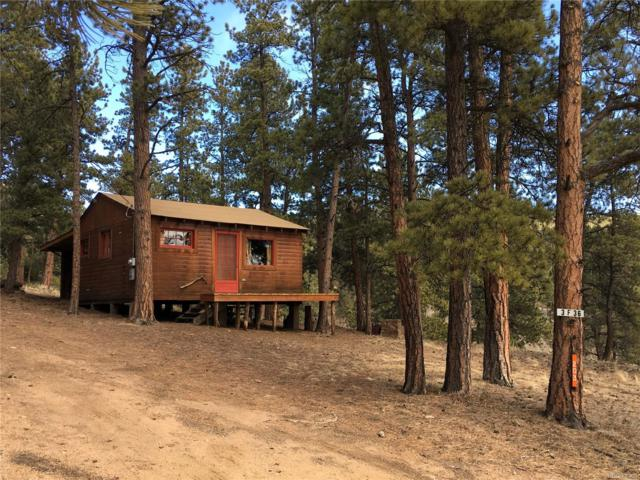 347 Gray Street, Bailey, CO 80421 (#4275770) :: The Pete Cook Home Group