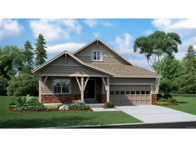 9345 Dunraven Loop, Arvada, CO 80007 (#4286288) :: The Dixon Group