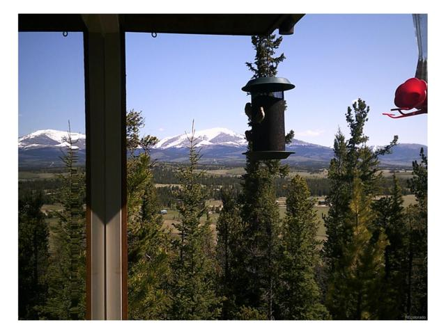 2093 High Creek Road, Fairplay, CO 80440 (MLS #4288695) :: 8z Real Estate