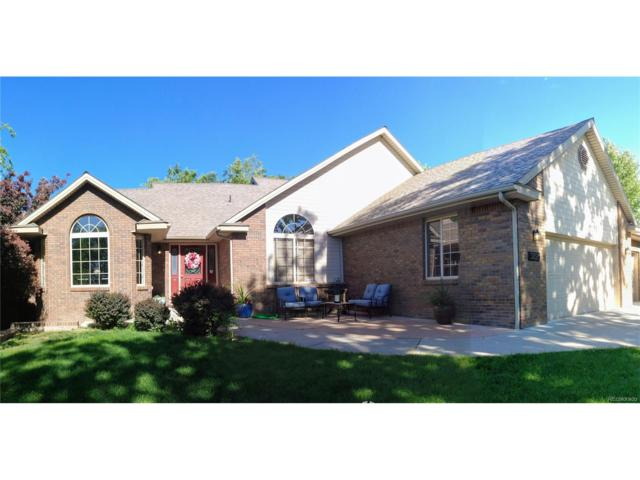 3825 Horizon Glen Court, Grand Junction, CO 81506 (MLS #4291360) :: 8z Real Estate