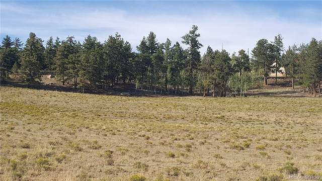 1583 Arapaho Road, Hartsel, CO 80449 (MLS #4291870) :: Bliss Realty Group
