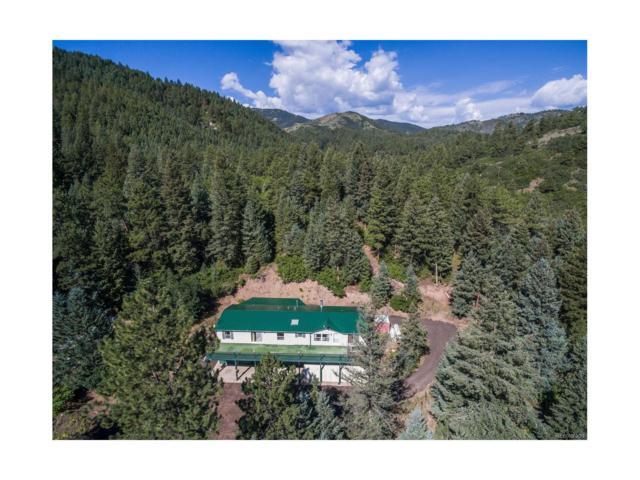 9871 S Deer Creek Road, Littleton, CO 80127 (MLS #4292620) :: 8z Real Estate