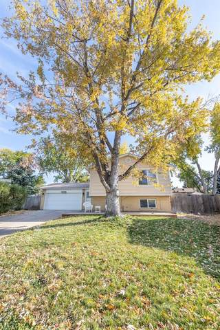 2466 S Dillon Street, Aurora, CO 80014 (#4294063) :: My Home Team