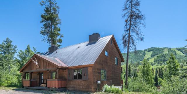 1530 Kinnikinnick Lane, Steamboat Springs, CO 80487 (#4295067) :: Wisdom Real Estate