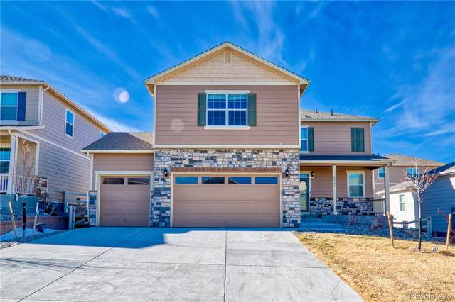 6031 Point Rider Circle, Castle Rock, CO 80104 (#4295482) :: The HomeSmiths Team - Keller Williams
