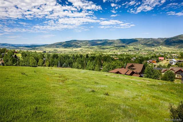 2250 Bear Drive, Steamboat Springs, CO 80487 (#4296231) :: HomeSmart Realty Group