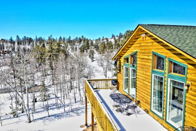 1213 Ute Trail, Como, CO 80432 (#4297399) :: Bring Home Denver with Keller Williams Downtown Realty LLC