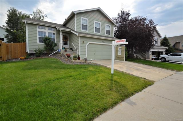 6228 E 121st Place, Brighton, CO 80602 (#4299032) :: The DeGrood Team