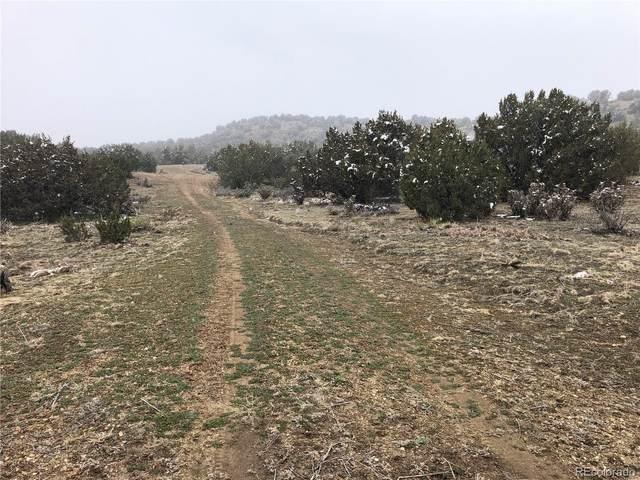 7667 Soda Creek Road, Pueblo, CO 81005 (#4303101) :: The HomeSmiths Team - Keller Williams