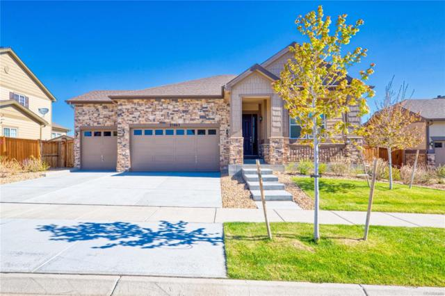25063 E Archer Place, Aurora, CO 80018 (#4306350) :: The Heyl Group at Keller Williams