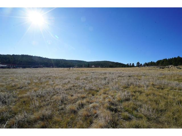 307 Cr 43A, Bailey, CO 80421 (#4307380) :: The Heyl Group at Keller Williams