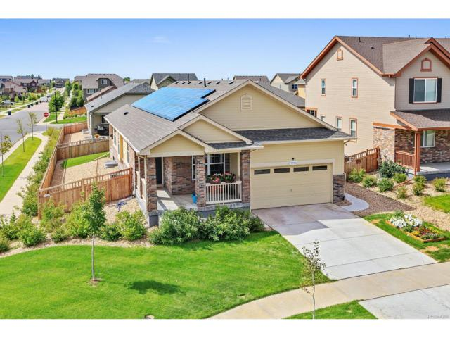 19506 E 62nd Place, Aurora, CO 80019 (MLS #4311989) :: 8z Real Estate