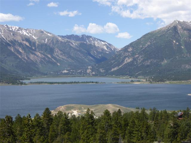 Reva Ridge Road, Twin Lakes, CO 81251 (#4312558) :: The DeGrood Team