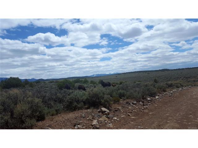 Lellehammer, San Luis, CO 81152 (MLS #4312719) :: 8z Real Estate