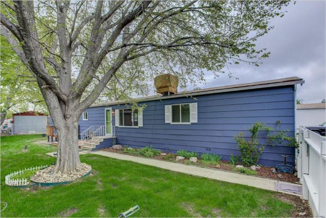 8505 Mummy Range Drive, Fort Collins, CO 80528 (#4313118) :: The DeGrood Team