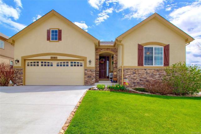 2808 E 142nd Place, Thornton, CO 80602 (#4318938) :: House Hunters Colorado