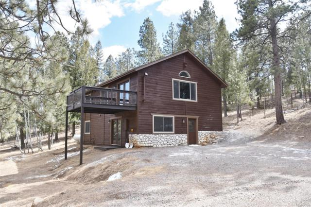 124 Blueberry Trail, Bailey, CO 80421 (MLS #4319268) :: 8z Real Estate