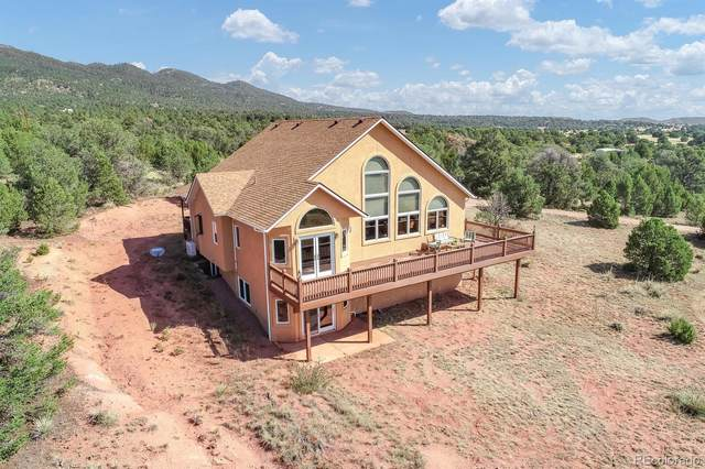 17250 S State Highway 115, Colorado Springs, CO 80926 (#4324400) :: The DeGrood Team