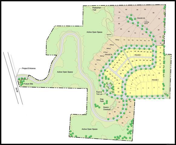 Indian Trails, Steamboat Springs, CO 80487 (#4327133) :: Bring Home Denver