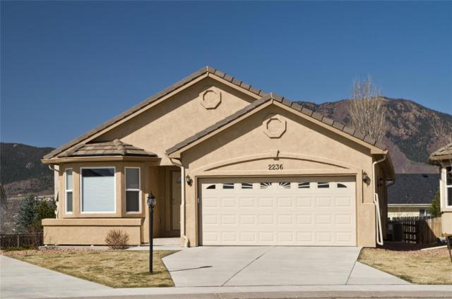 2236 Creek Valley Circle, Monument, CO 80132 (#4329621) :: The Peak Properties Group