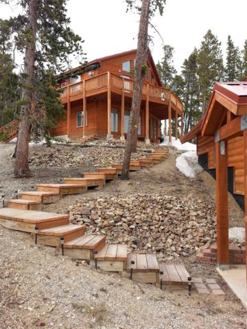 1471 Bobcat Lane, Fairplay, CO 80440 (#4331869) :: Bring Home Denver