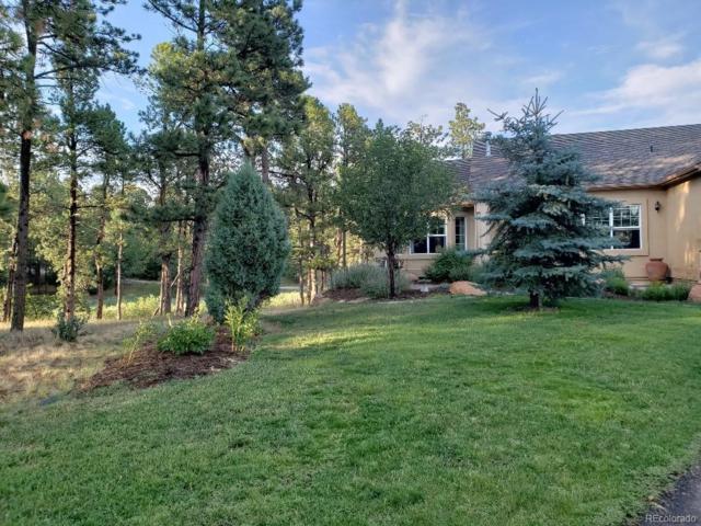 550 Hidden Marsh Road, Monument, CO 80132 (MLS #4335970) :: 8z Real Estate