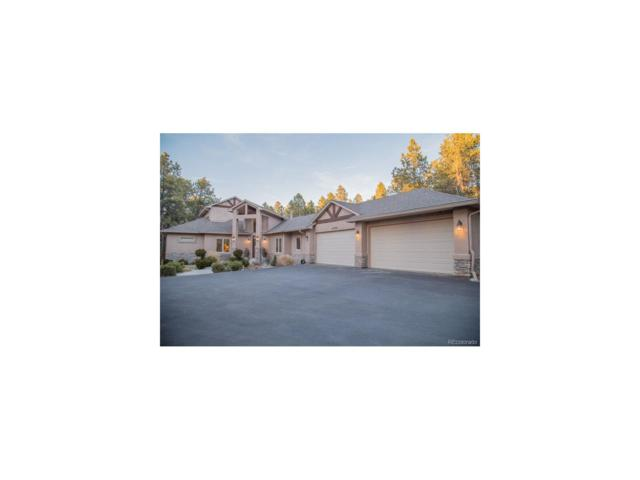 15785 Pole Pine Point, Colorado Springs, CO 80908 (#4340284) :: The Peak Properties Group