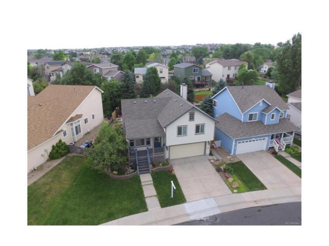 10772 Wheatfield Lane, Parker, CO 80138 (MLS #4340882) :: 8z Real Estate