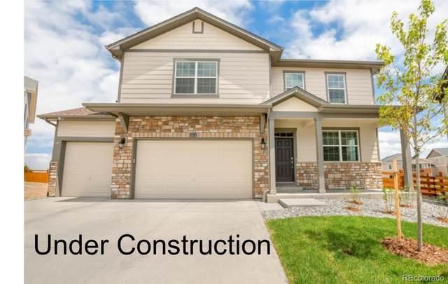 1668 Clarendon Street, Windsor, CO 80550 (MLS #4344143) :: Kittle Real Estate