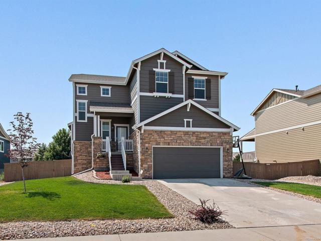 305 Calhoun Circle, Castle Rock, CO 80104 (#4348349) :: Bring Home Denver