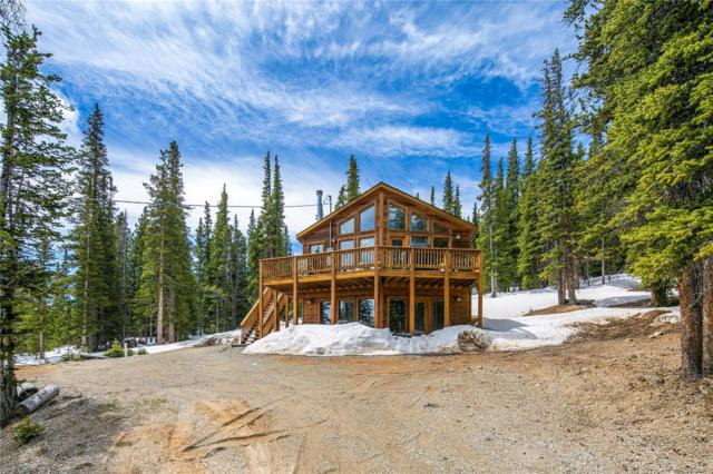 85 Bum Drive, Fairplay, CO 80440 (MLS #4352497) :: Kittle Real Estate